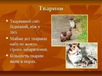 Тварини Тваринний світ бідніший, ніж у лісі. Майже всі тварини набули жовто-с...