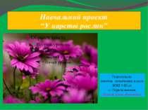"""Навчальний проект """"У царстві рослин"""" Підготувала вчитель початкових класів ЗО..."""