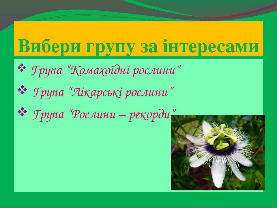 """Вибери групу за інтересами Група """"Комахоїдні рослини"""" Група """"Лікарські рослин..."""