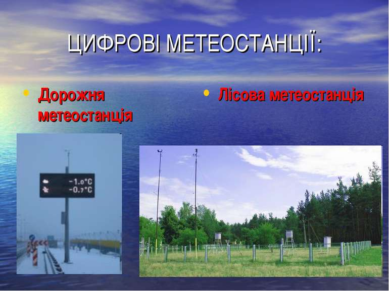 ЦИФРОВІ МЕТЕОСТАНЦІЇ: Дорожня метеостанція Лісова метеостанція