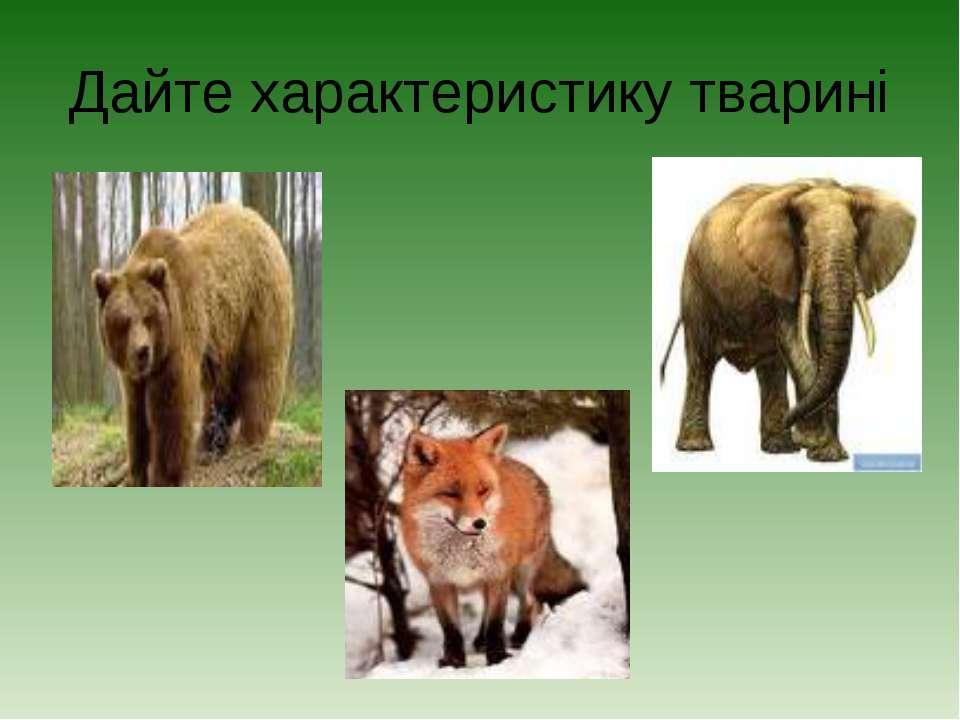 Дайте характеристику тварині