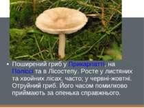 Поширений гриб уПрикарпатті, наПоліссіта в Лісостепу. Росте у листяних та ...