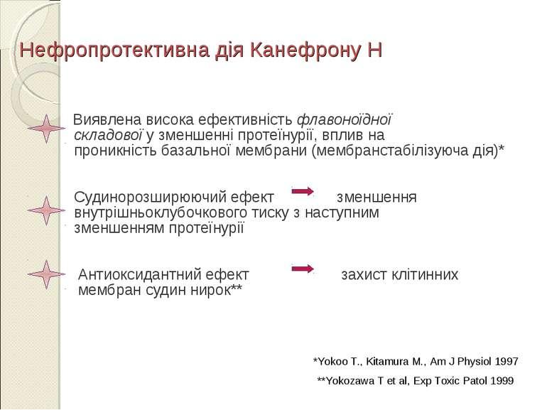 Нефропротективна дія Канефрону Н Виявлена висока ефективність флавоноїдної ск...