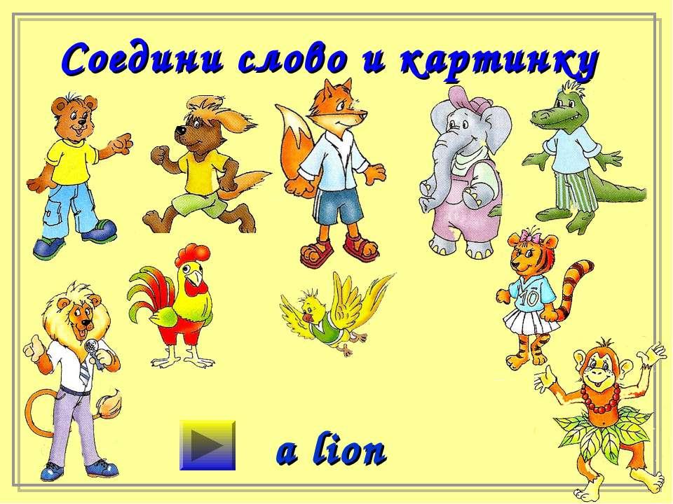 Соедини слово и картинку a lion