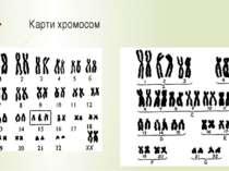 Карти хромосом