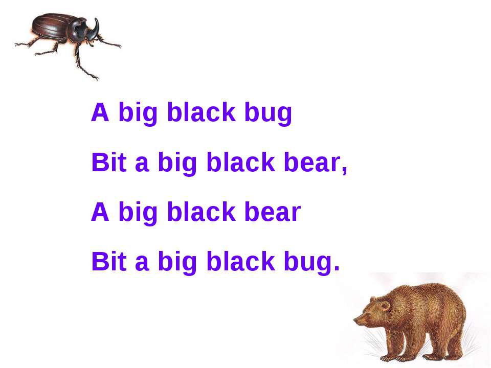 A big black bug Bit a big black bear, A big black bear Bit a big black bug.