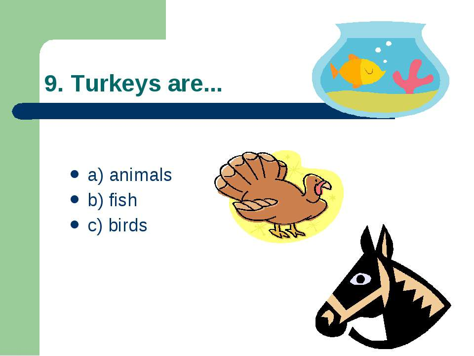 9. Turkeys are... a) animals b) fish c) birds