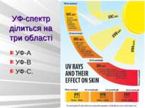 УФ-спектр ділиться на три області УФ-А УФ-В УФ-С.