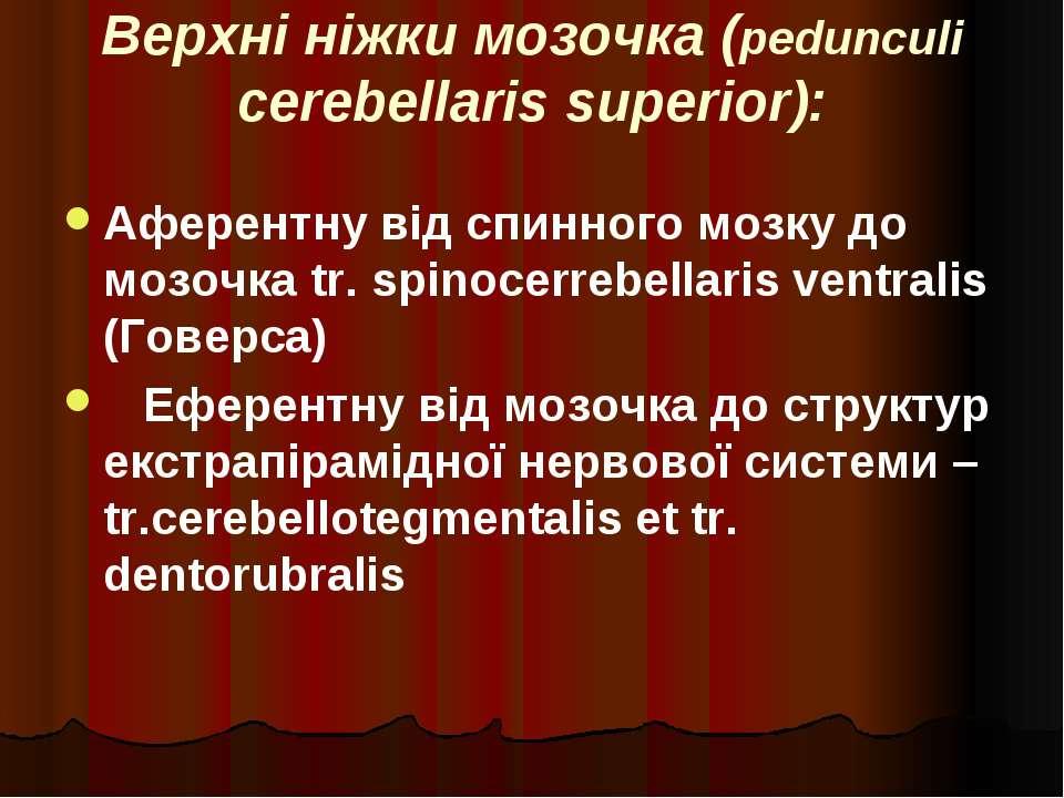 Верхні ніжки мозочка (pedunculi cerebellaris superior): Аферентну від спинног...