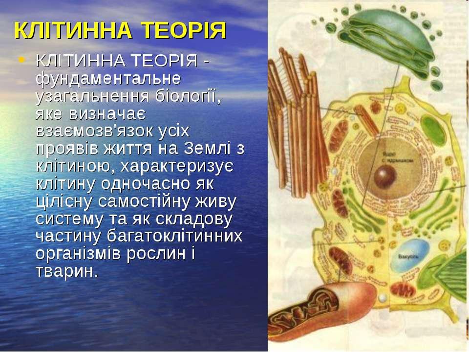КЛІТИННА ТЕОРІЯ КЛІТИННА ТЕОРІЯ - фундаментальне узагальнення біології, яке в...