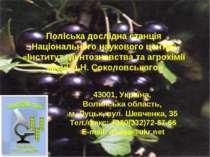 Поліська дослідна станція Національного наукового центру «Інститут грунтознав...