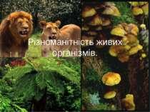 Різноманітність живих організмів.