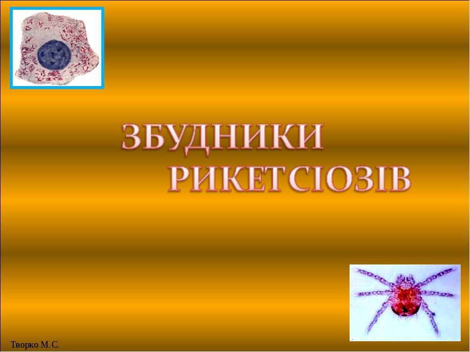 Творко М.С.