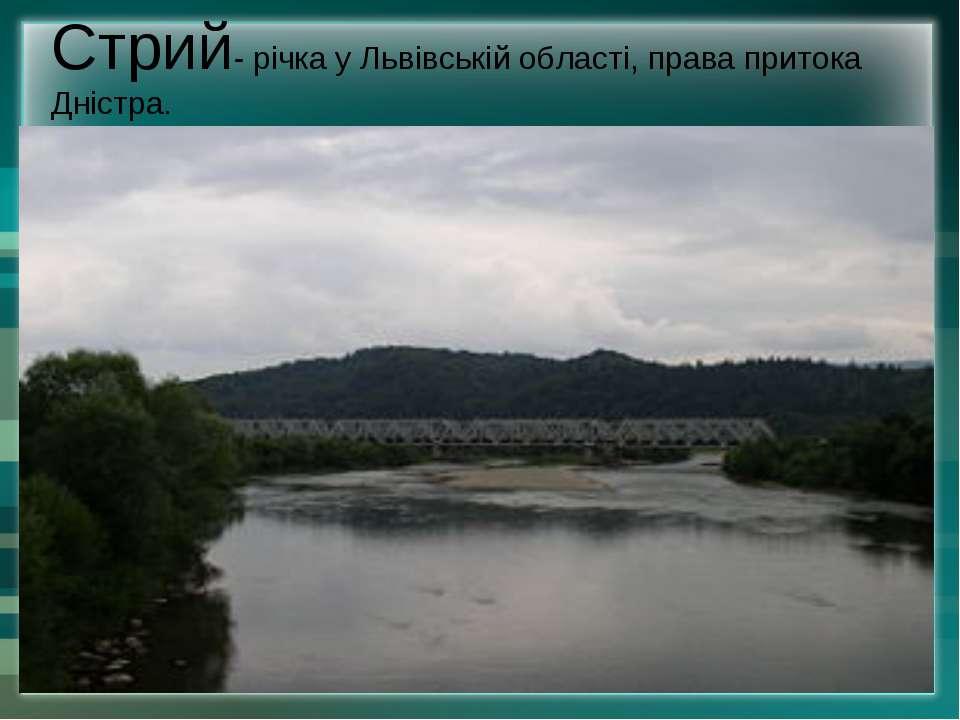 Стрий- річка у Львівській області, права притока Дністра.
