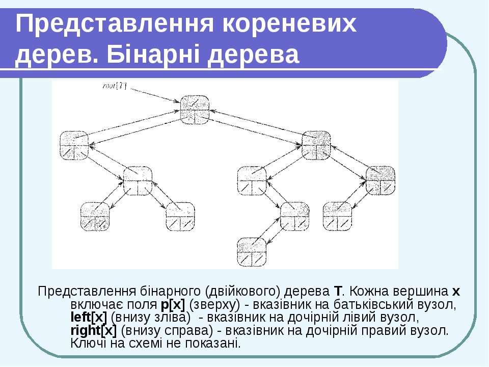 Представлення кореневих дерев. Бінарні дерева Представлення бінарного (двійко...