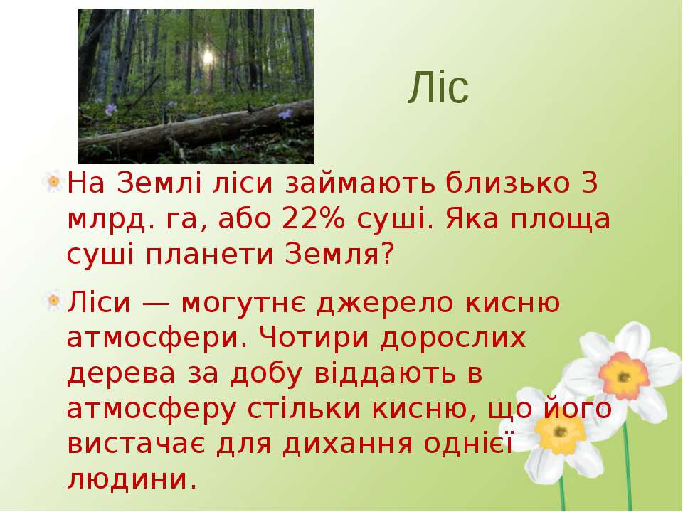 Ліс На Землі ліси займають близько 3 млрд. га, або 22% суші. Яка площа суші п...