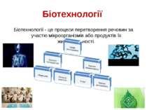Біотехнології Біотехнології - це процеси перетворення речовин за участю мікро...