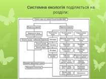 Системна екологія поділяється на розділи:
