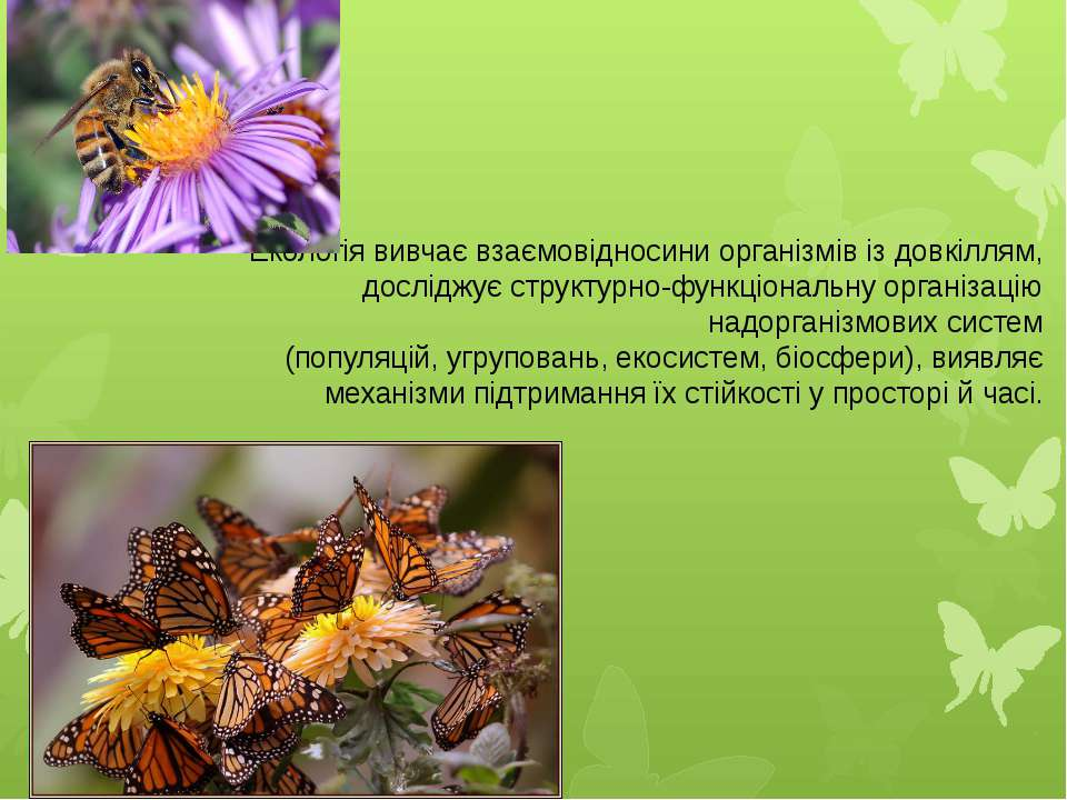 Екологія вивчаєвзаємовідносини організмівіздовкіллям, досліджує структурно...