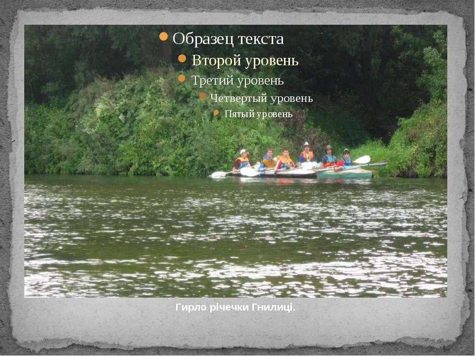 Гирло річечки Гнилиці.
