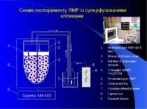 9 8 Брукер АМ-400 CO 2 + O 2 6 5 3 4 2 1 CO 2 + O 2 7 Схема експерименту ЯМР ...