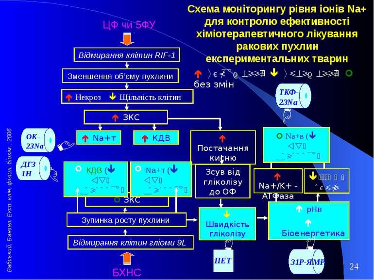 ЗКС Na+т ( vs. контроль) КДВ ( vs. контроль) БХНС Відмирання клітин гліоми 9L...