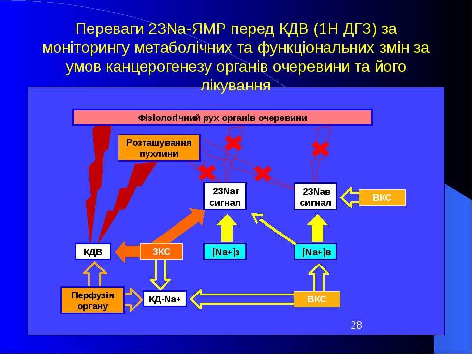 23Naт сигнал КДВ Розташування пухлини [Na+]з 23Naв сигнал [Na+]в Фізіологічни...
