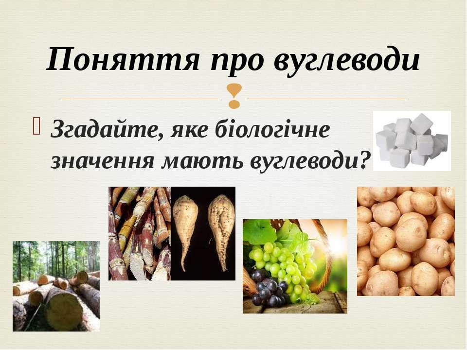 Згадайте, яке біологічне значення мають вуглеводи? Поняття про вуглеводи