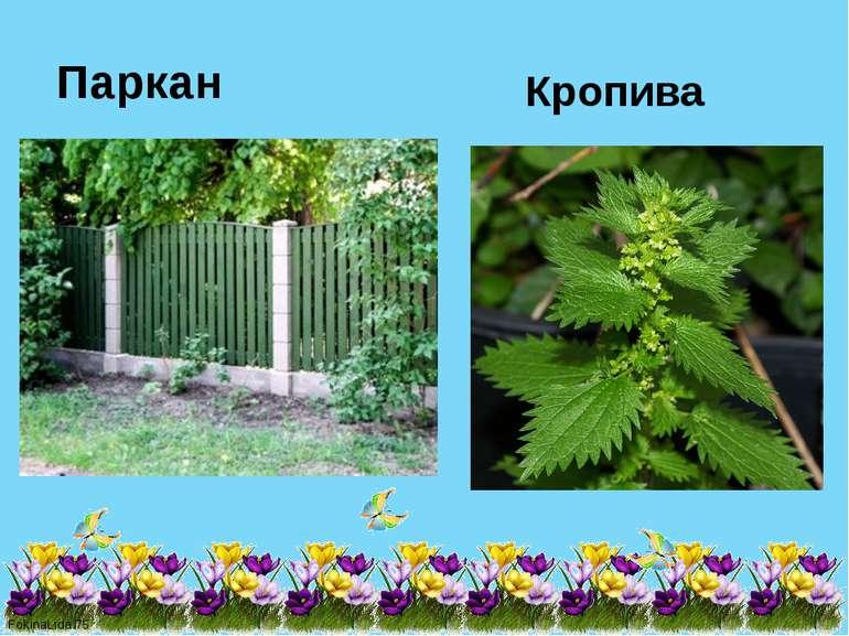 Паркан Кропива FokinaLida.75