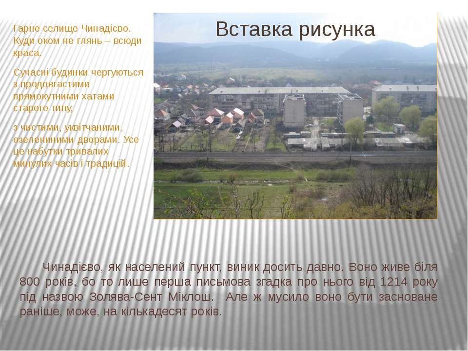 Гарне селище Чинадієво. Куди оком не глянь – всюди краса. Сучасні будинки чер...