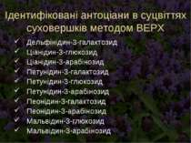 Ідентифіковані антоціани в суцвіттях суховершків методом ВЕРХ Дельфінідин-3-г...