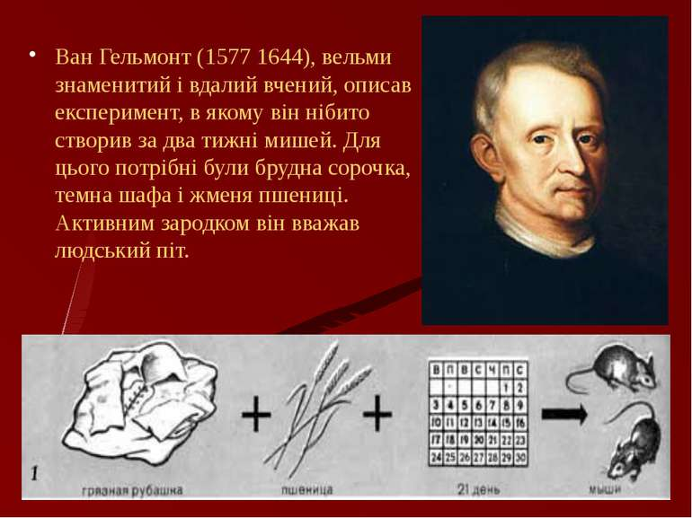 Ван Гельмонт (1577 1644), вельми знаменитий і вдалий вчений, описав експериме...