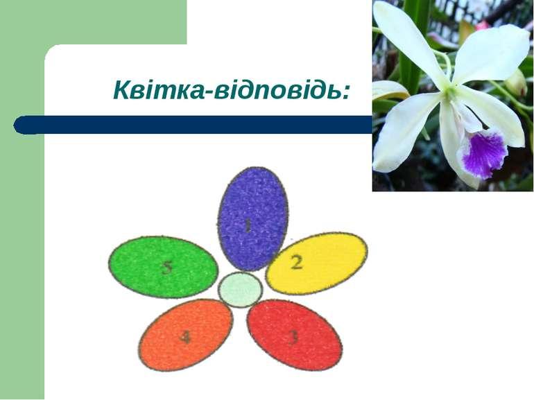 Квітка-відповідь: