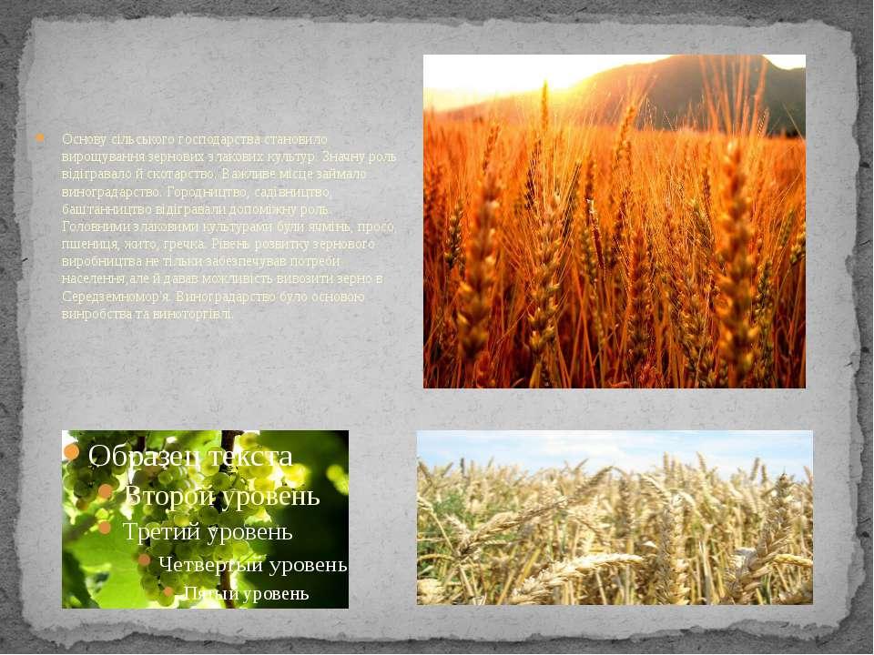 Основу сільського господарства становило вирощування зернових злакових культу...