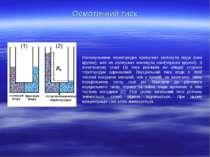 Осмотичний тиск Напівпроникна перегородка пропускає молекули води (сині кружк...