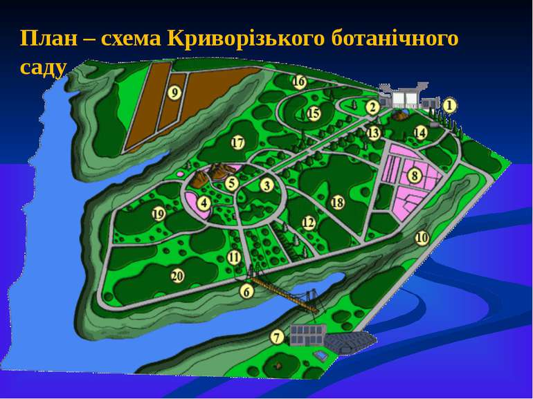 План – схема Криворізького ботанічного саду