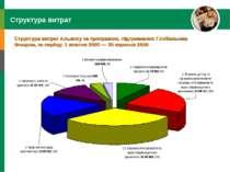 Структура витрат Структура витрат Альянсу за програмою, підтриманою Глобальни...