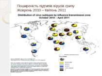 Поширеність підтипів вірусів грипу Жоврень 2010 – Квітень 2011
