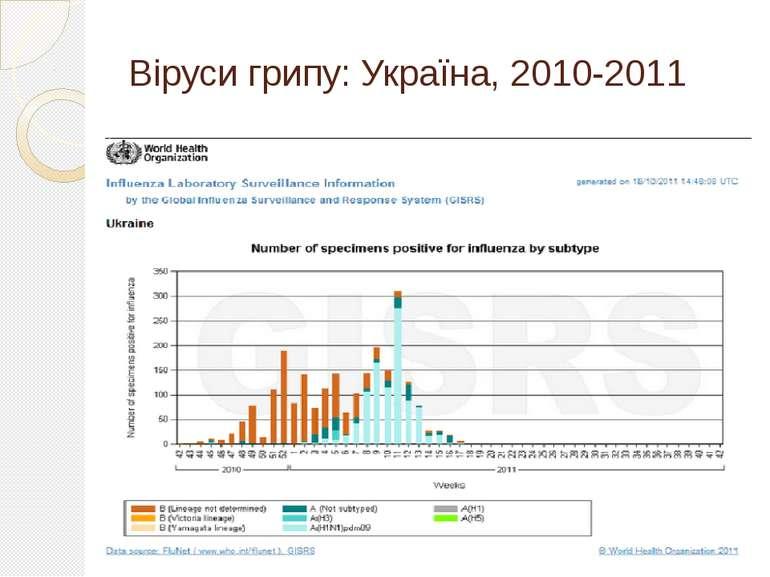Віруси грипу: Україна, 2010-2011