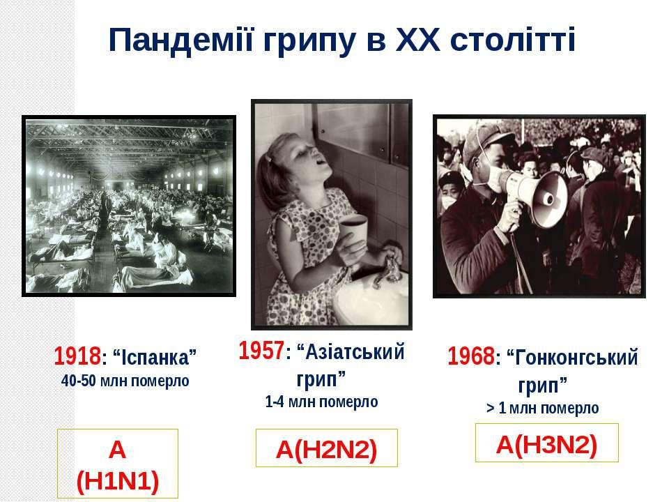 """А (H1N1) А(H2N2) А(H3N2) 1918: """"Іспанка"""" 40-50 млн померло 1957: """"Азіатський ..."""