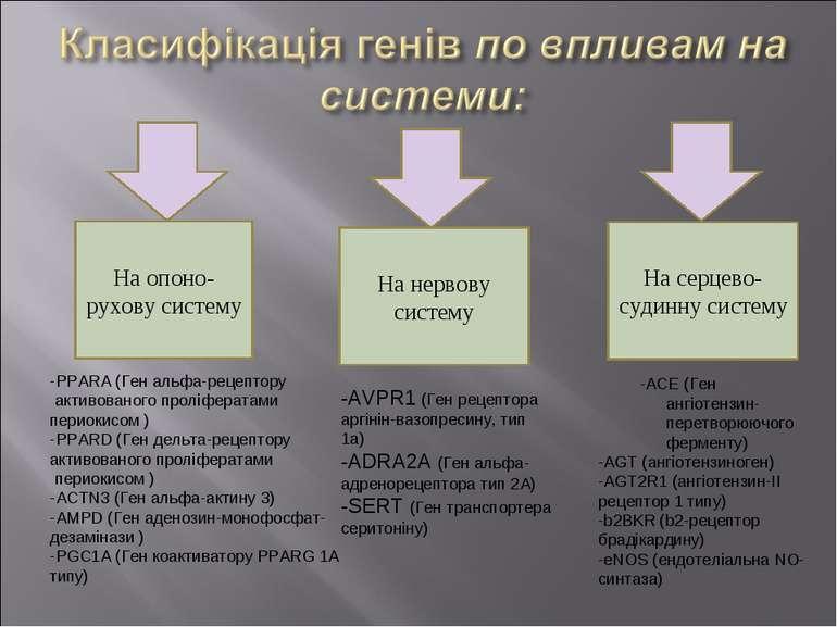 На опоно-рухову систему На нервову систему На серцево-судинну систему -AVPR1 ...