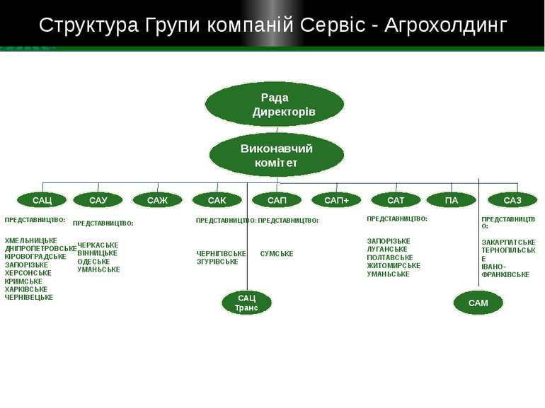 Структура Групи компаній Сервіс - Агрохолдинг Рада Директорів Виконавчий комі...