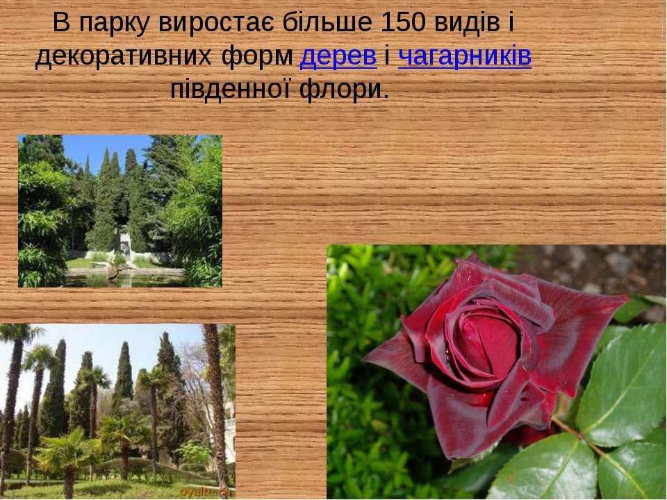 В парку виростає більше 150 видів і декоративних форм дерев і чагарників півд...