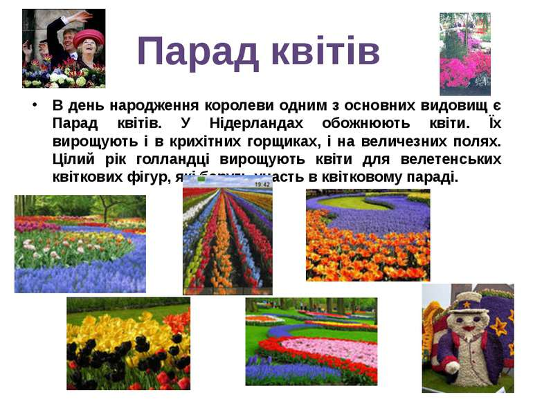 В день народження королеви одним з основних видовищ є Парад квітів. У Нідерла...