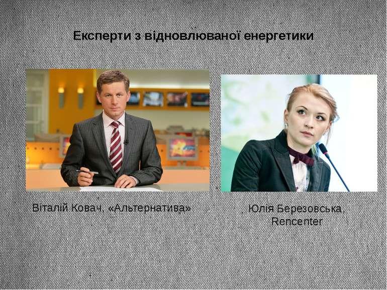 Експерти з відновлюваної енергетики Віталій Ковач, «Альтернатива» Юлія Березо...