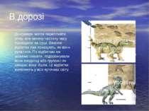 В дорозі Динозаври могли перепливти річку, але велику частину часу проводили ...