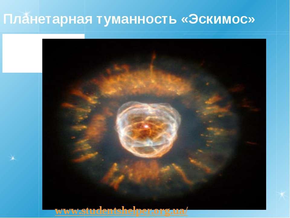 Планетарная туманность «Эскимос» www.studentshelper.org.ua/