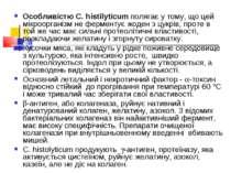 Особливістю C. histilyticum полягає у тому, що цей мікроорганізм не ферментує...
