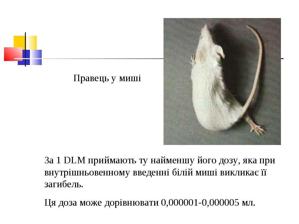 Правець у миші За 1 DLM приймають ту найменшу його дозу, яка при внутрішньове...
