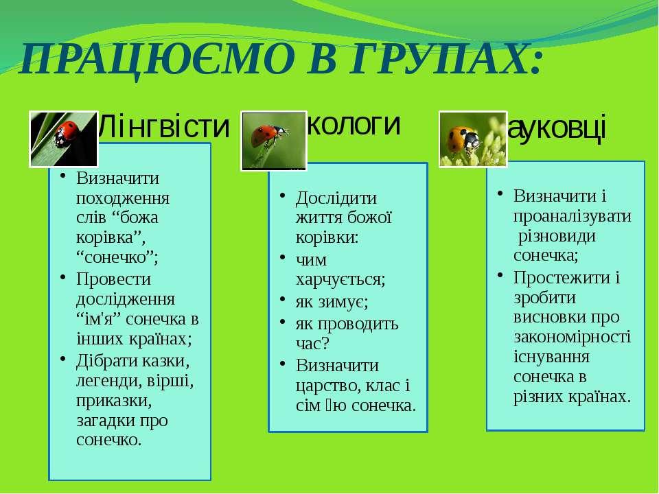 ПРАЦЮЄМО В ГРУПАХ: